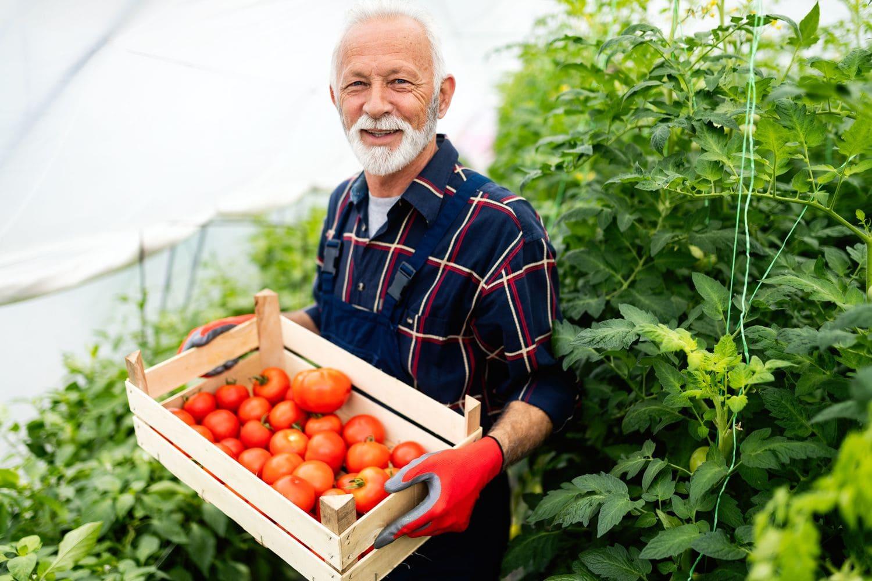 Сам вырастил и продал урожай – НДФЛ можно не платить