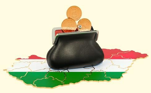 Венгрия вводит временные налоги