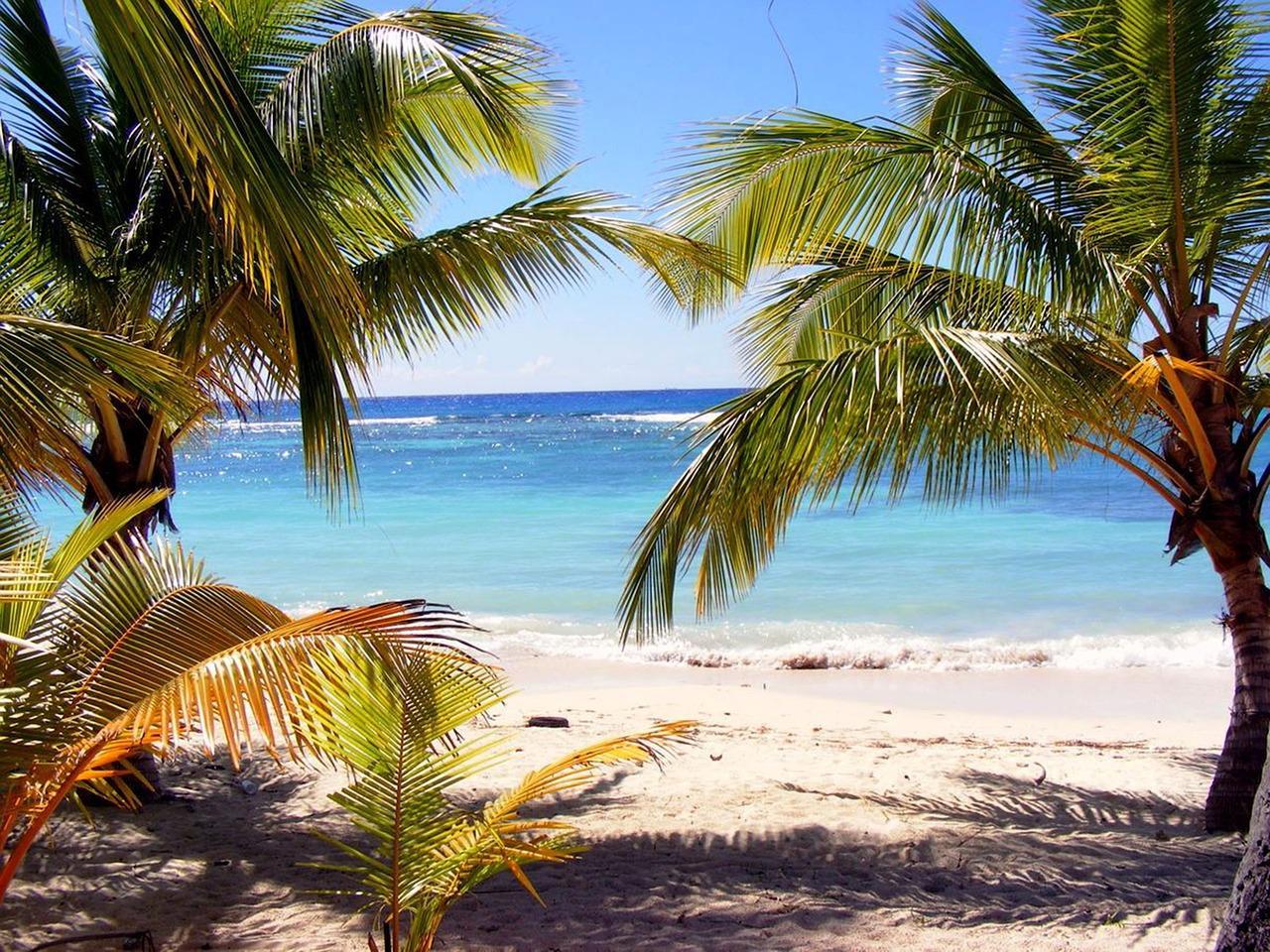 Госдума приняла законопроекты о ратификации договоров об основах отношений с Белизом и Содружеством Доминики