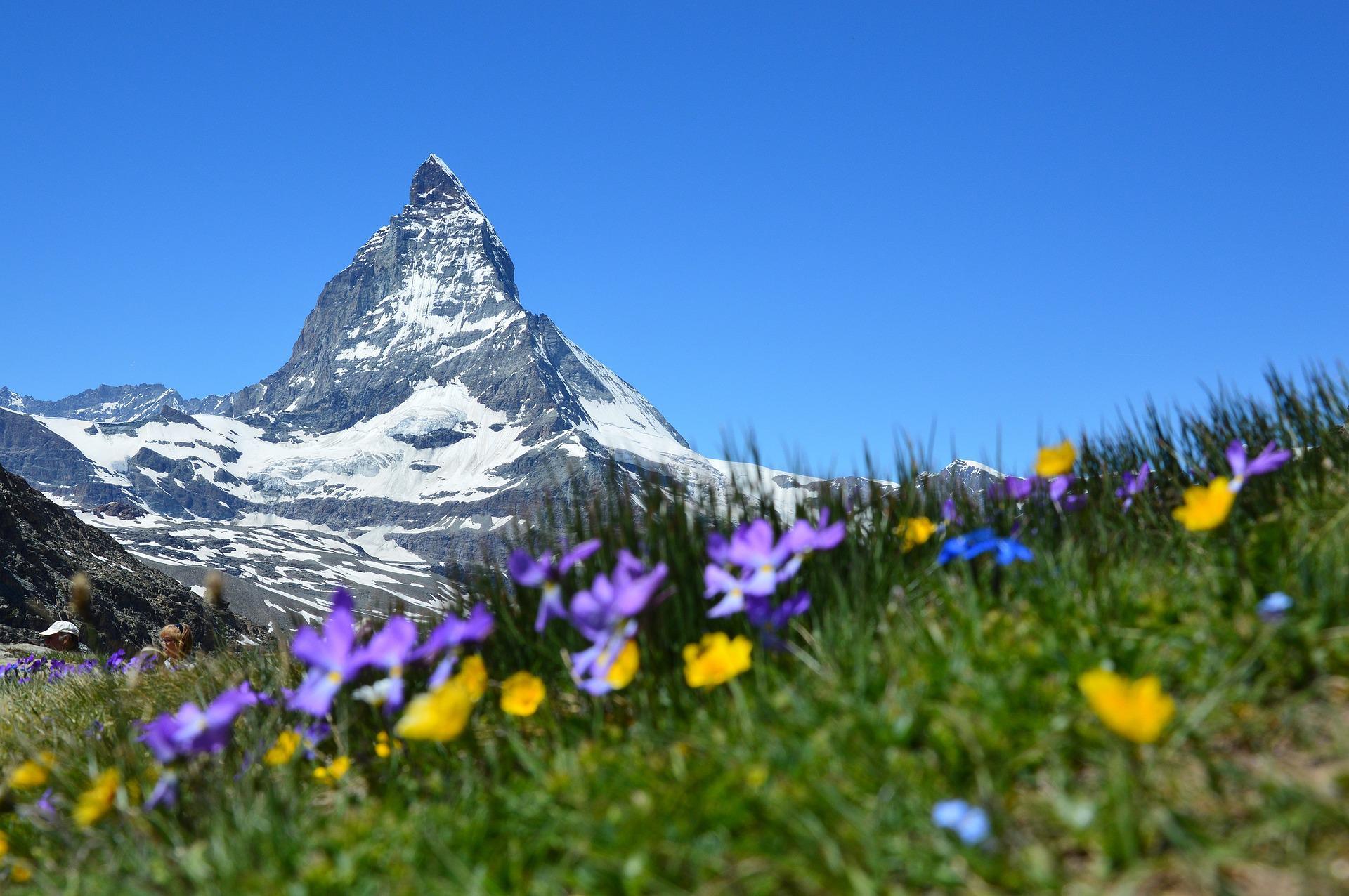 ФНС заглянет в швейцарские счета