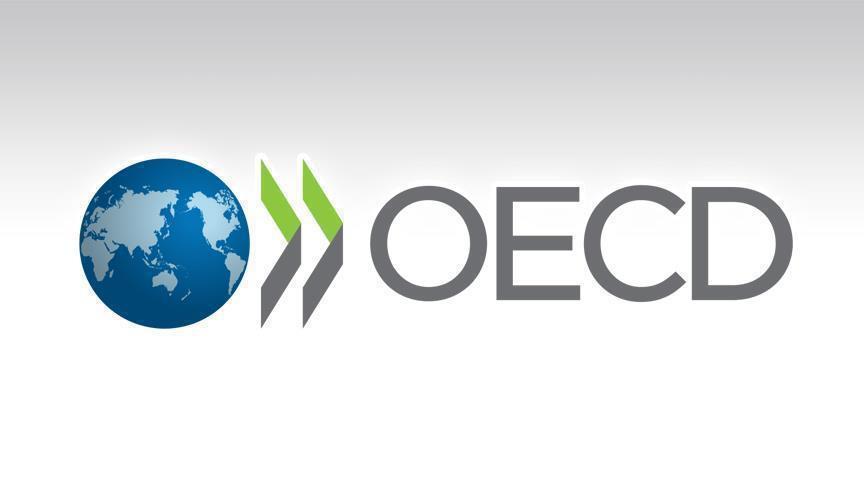 ОЭСР выпустил первый инструментарий по бенефициарному владению