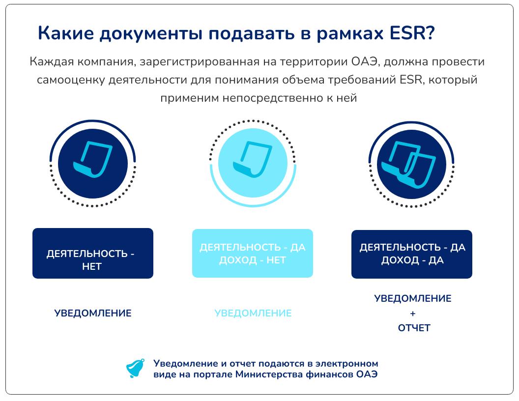 Краткая схема: какие документы подаются в рамках ESR